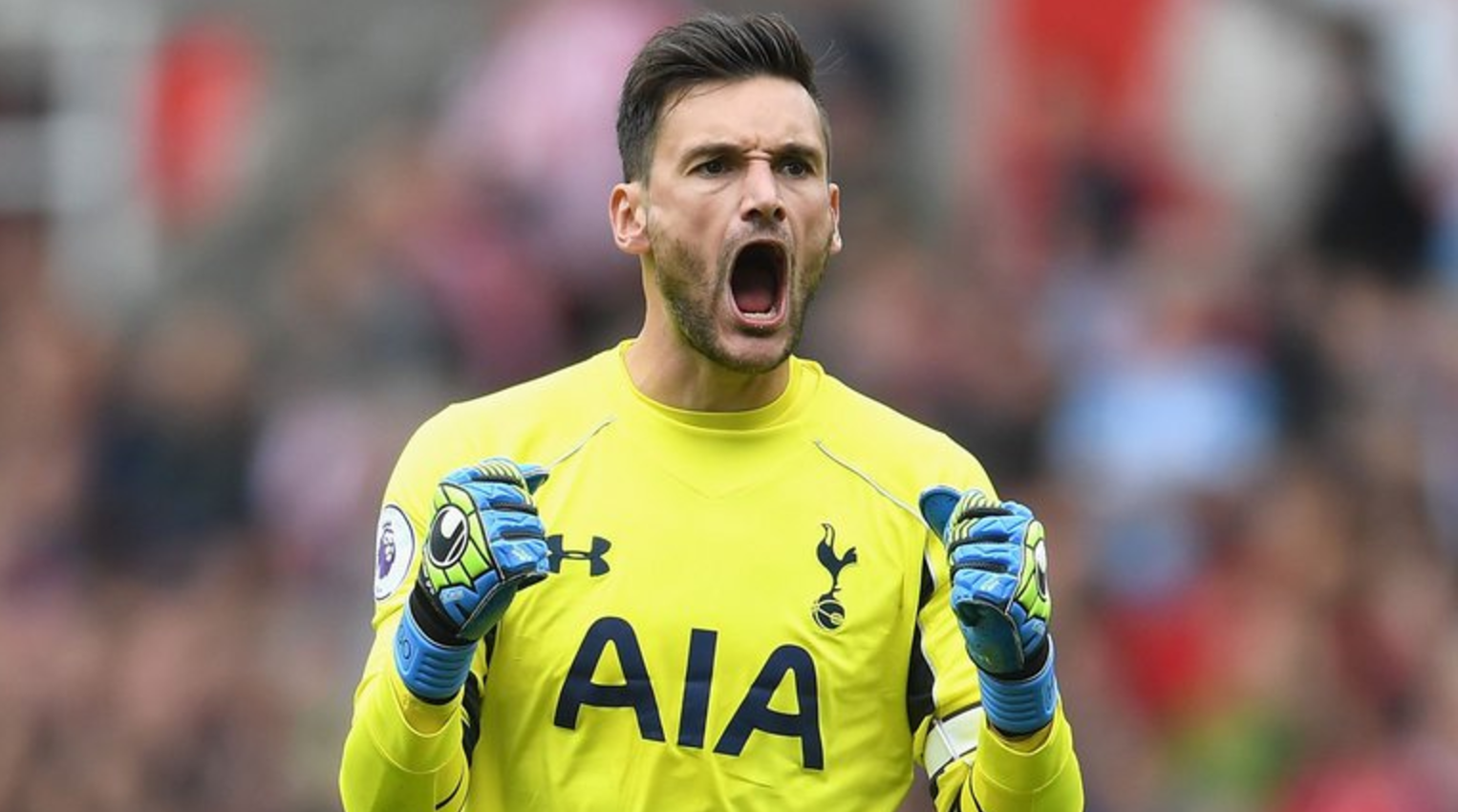 GK: Hugo Lloris (£10.7m)